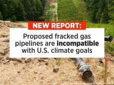 Pipeline Report image