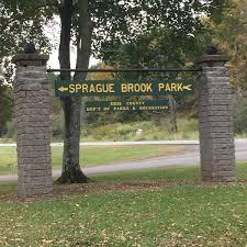 Sprague Brook